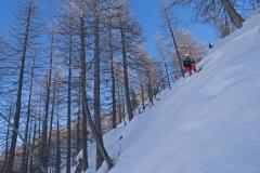 Ski dans le Bois de Mamezel