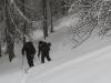 escalade-aventure-freerando-splitboard-2014-02-04-09