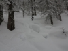 escalade-aventure-freerando-splitboard-2014-02-04-20
