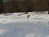 Neige douce à Sestriere.