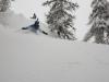 Ski dans les Bois en famille à Puy saint Vincent