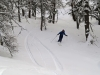 Ski vers Freissinieres