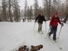 Montée en ski de rando en Vallouise