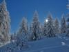 Puy saint Vincent, paysage d\'hiver.