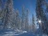 Ski Hors Pistes à Puy Saint Vincent, Les Bois d\'Oréac.