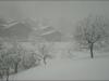 Neige à Grindelwald.
