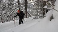 Ski de Rando à Freissinieres