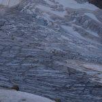 Initiation marche sur un glacier avec Alpes Aventure