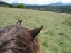 arete-haut-alpine-2007-05-28-01