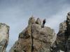 arete-haut-alpine-2007-06-17-02