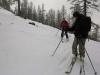 Ski dans la forêt.
